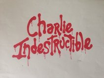 Charlie Indestructible