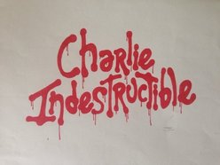 Image for Charlie Indestructible