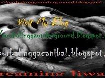 Purbalinggaunderground (Blog)
