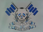 Image for Blue Flags & Black Grass