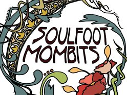 Image for Soulfoot Mombits