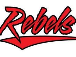 Image for Radical Rebels
