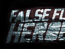 Image for False Flag Heroes
