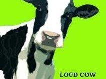 Loud Cow Studio//Brand New Heads