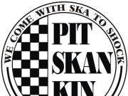 Image for PITSKANKIN