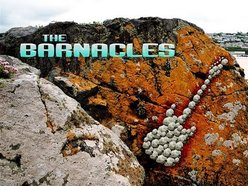 Image for The Barnacles