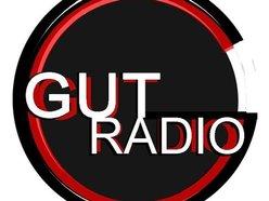 Image for Gut Radio