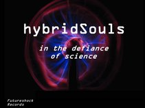 Hybrid Souls