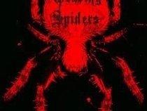 WEAVING SPIDERS