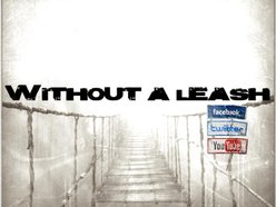 Image for Without A Leash