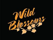 WILD BLOSSOMS BAND