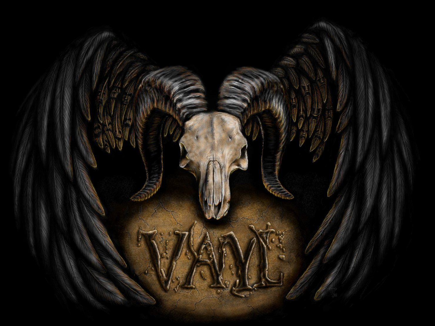 Image for VAyL