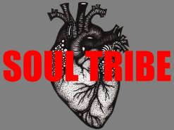 Image for SOUL TRIBE
