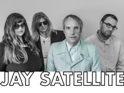 Image for Jay Satellite