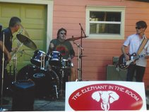 The Elephant in the Room Band