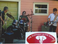 Image for The Elephant in the Room Band