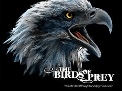 Image for Birds of Prey Band