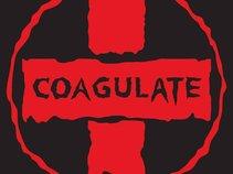 Coagulate