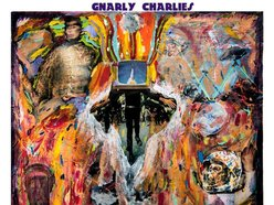 Image for Gnarly Charlies