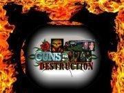 Guns for Destruction