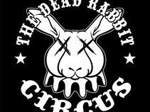 The Dead Rabbit Circus
