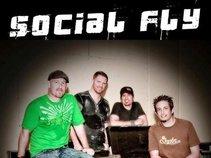 Social Fly
