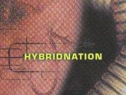 HybridNation