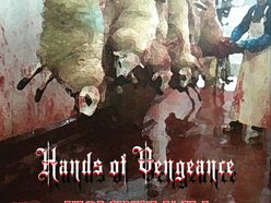 Image for Hands of Vengeance
