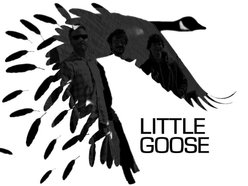 Image for Little Goose