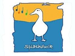 Splashduck