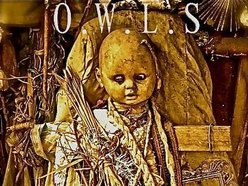 Image for O.W.L.S
