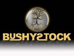 Image for BushyStock