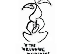 The Running Chickens