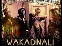 Wakadinali