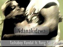 Tashaboy_Vandal