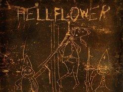 Hellflower
