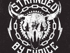 Image for Stranded By Choice