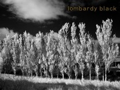 Image for Lombardy Black