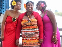 HIBISCUS AFRO CARIBBEAN GROOVE