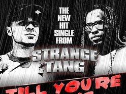 Image for Strange Tang