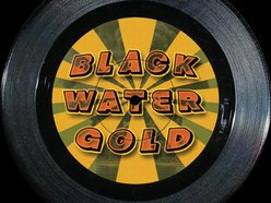 Image for Black Water Gold