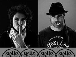 Image for Gallo