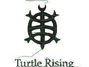 Image for Turtle Rising