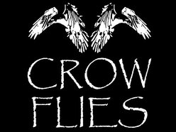 Image for Crow Flies
