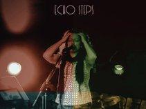 Echo Steps
