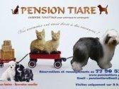 Pension Tiare