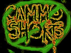 Image for Cammo Shorts