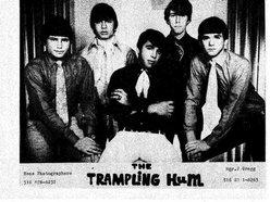 Image for Trampling HUM