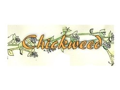Image for Chickweed