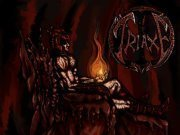 Image for Triaxe